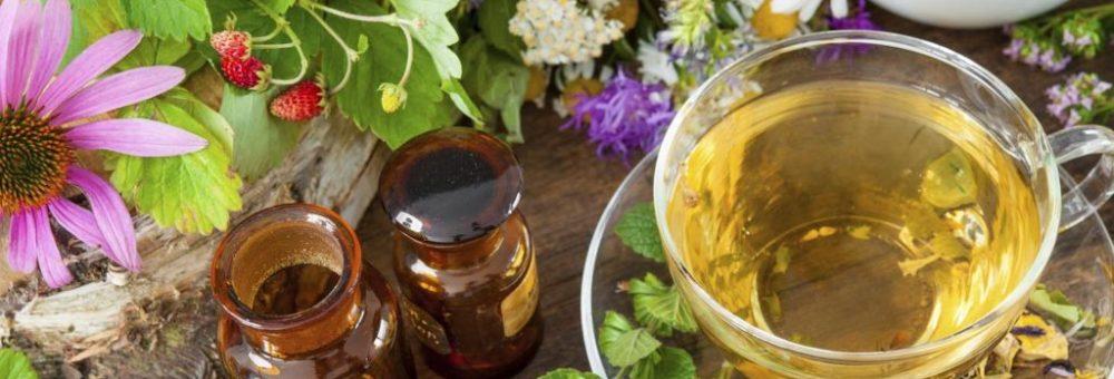 Cele mai bune plante pentru un ficat sănătos